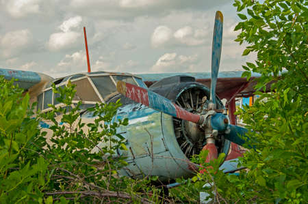 old plane: Abandoned old plane ruins in a forest- cockpit view