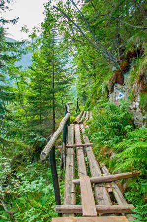 surmount: Pedestrian bridge in Carpathians mountains