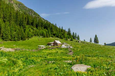 sheepfold: Abandoned wooden sheepfold in Carpathians near the mountain range