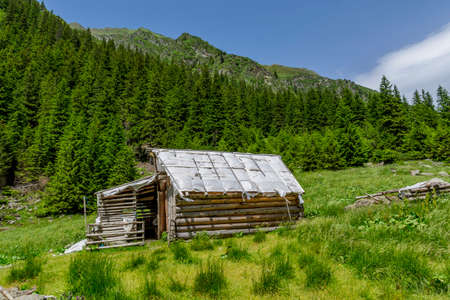 Abandoned wooden sheepfold in Carpathians mountains near the pine trees forest Stock Photo
