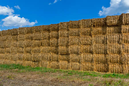 compress: Straw or hay stacked in a field after harvesting.Straw bale wall.