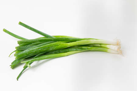 scallion: Scallion, green onion, and spring onion, are colloquial names (with many other regional names throughout the world) for various Allium species. All of the Allium have hollow green leaves (like the common onion), but these are used while they lack a fully