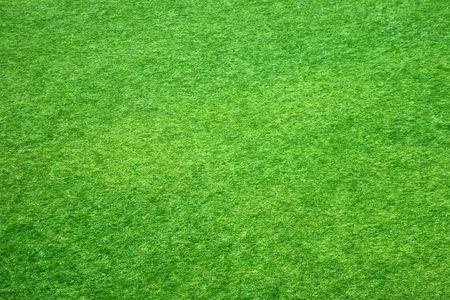 Green Gras Textur aus einem Fu�ball-Feld