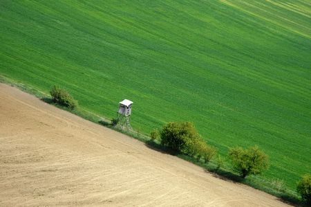greengrass: A field in spring with deer stand for hunting - an aerial view