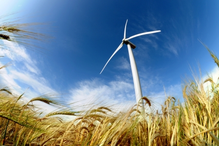 energy fields: Wind turbine - renewable energy source  Stock Photo