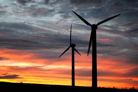 wind farm at dusk