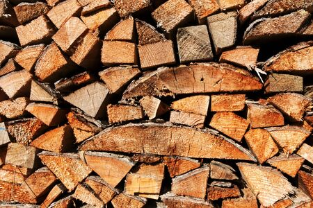 pile of logs: Pile of wood logs
