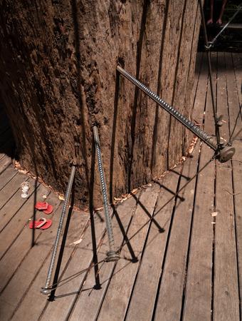 Western Australia, Australia, 10042015, Walpole Nornalup National Park tree climb stair pins