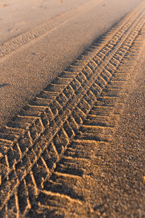 indent: Tyre tracks going off in the distance on a golden sandy beach at sunset