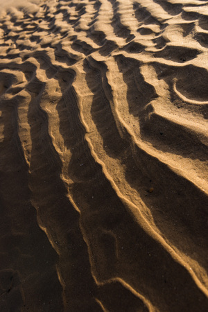 indent: Ripple textures in the sand at sunset on a warm golden beach