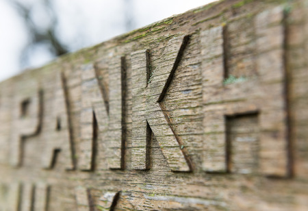 hand carved: Hand carved chiseled letters on an old wooden bench covered in moss