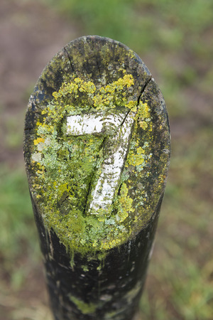 treck: rustic number seven hand carved into a wooden marker on a walking trail Stock Photo