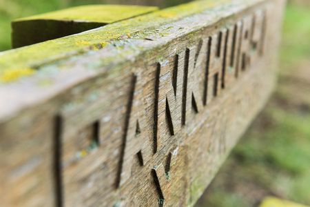 carved letters: Hand carved chiseled letters on an old wooden bench covered in moss