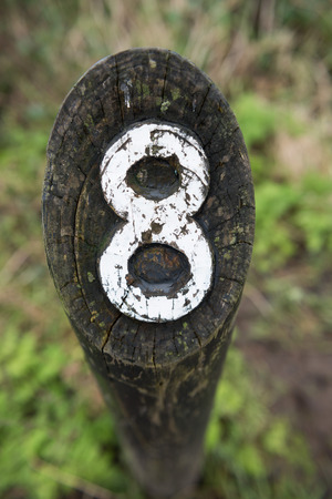treck: rustic number eight hand carved into a wooden marker on a walking trail