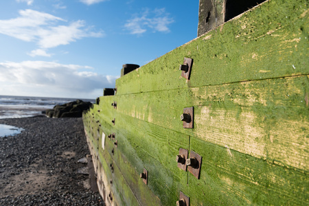 cleveleys, england, 02172016, A rustic, weathered wooden sea defence wall, covered in green algae on a beautiful sunny day
