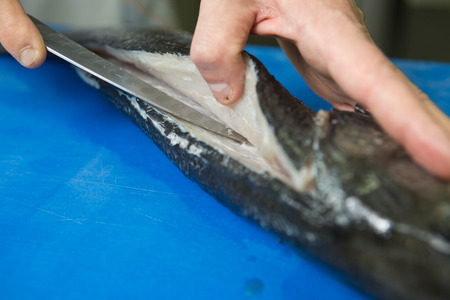 sombre: Filleting and removing the bone from a fresh fish on a blue cutting board using a sharp knife.