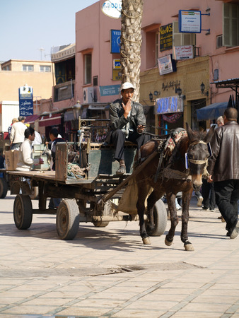 driven: Marrakech square, Morocco, 05052015, An arabic man on a donkey driven cart, transporting goods to the souk.