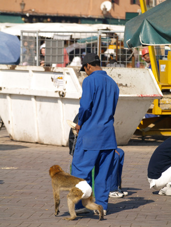 nappy: Marrakech square, Morocco, 05052015, An arabic man with a monkey in a nappy, on a chain, making money from tourists.