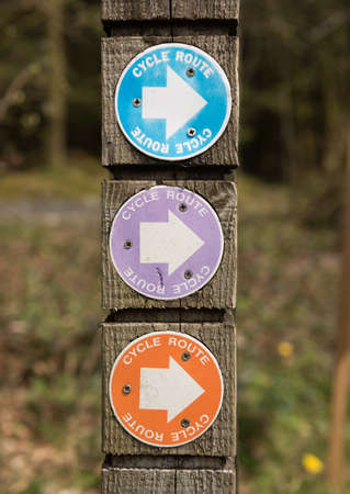 economic cycle: Cycle bicycle route signs on a wooden post in a forest.