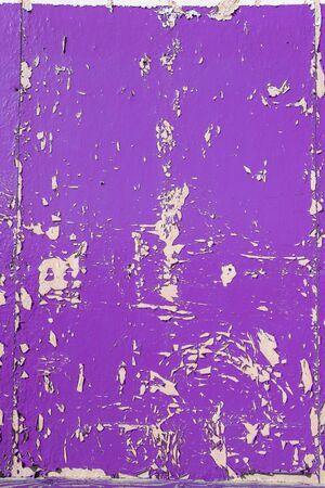 crackling: Purple dry peeling crackling chipped paint textured wall