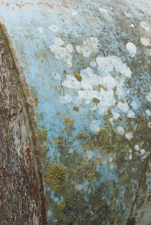 chipped paint: A rustic metal weathered texture, with moss and chipped paint. Stock Photo