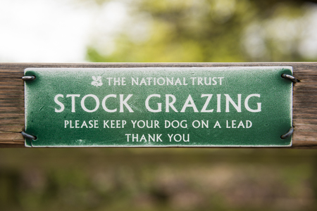 sheep warning: The lake district, England, 06062016, A national trust stock grazing warning sign on a filed gate. Keep your dog on a lead. Safety for livestock.