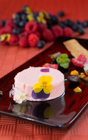 A beautiful rich gourmet blueberry and raspberry cheesecake, garnished with rose petals on a modes black plate. Stock Photo