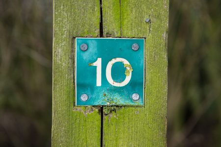 number ten: Rustic number ten sign, on a wooden marker , on a walking trail, in a mossy forest.