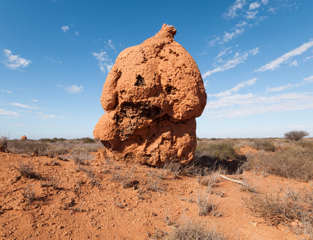 A giant termite hill colony, made of red sand, in the western australian outback.