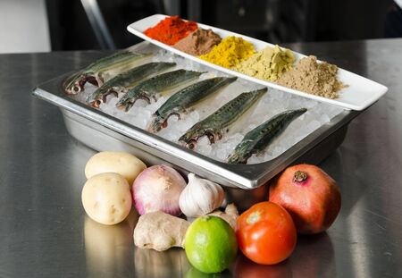 Whole organic fresh mackerel fish sitting on a bed of ice in a metal tray. The fresh fish are being prepared for filleting and de boning. Stock Photo