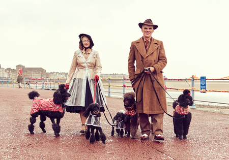 london, england, 05072017 , A retro and well dressed vintage couple on a retro seaside promenade, walking a pack of poodle dogs at a vintage nostalgic weekend event fair. Vintage street style.
