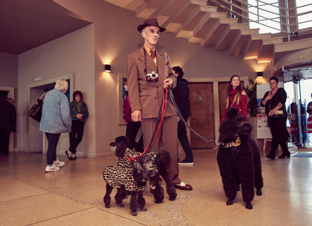 london, england, 05/07/2017 , A retro and well dressed vintage man with a pack of poodle dogs at a vintage nostalgic weekend event fair. Vintage street style.