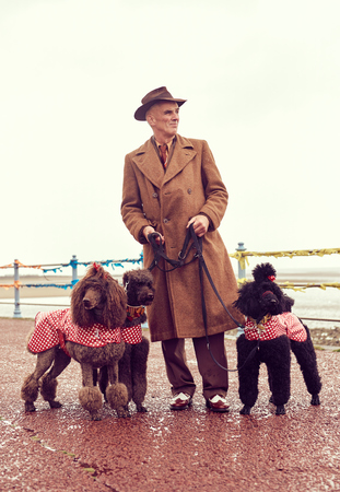 london, england, 05072017 , A retro and well dressed vintage man on a retro seaside promenade, walking a pack of poodle dogs at a vintage nostalgic weekend event fair. Vintage street style.