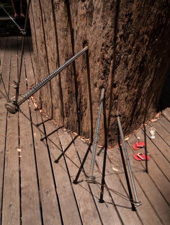 Western Australia, Australia, Walpole Nornalup National Park tree climb stair pins