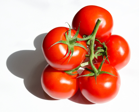 Vibrant organic ripe tomatoes in the sunshine isolated on a white background
