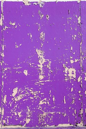 Purple dry peeling crackling chipped paint textured wall