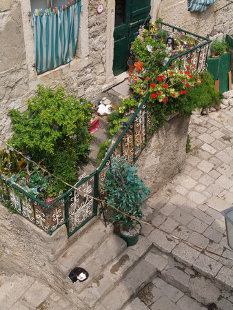 dubrovnik, Croatia, 06062016 Dubrovnik old town croatia, ariel view of a pretty garden