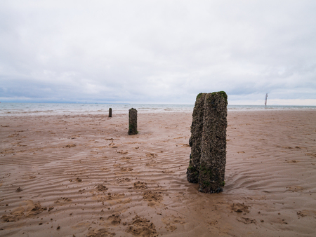 A depressing overcast gloomy day,  on a sandy beach, with weathered decaying wave breaker posts leading down to the sea.