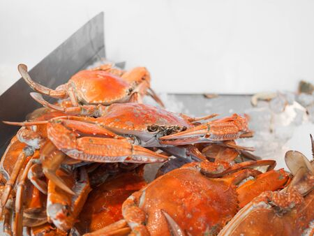 A beautiful live delicious pile of fresh seafood orange crabs with claws tied together in a seafood wet market. Fresh marine life delicacy expensive seafood. Crabbing and crab pots.