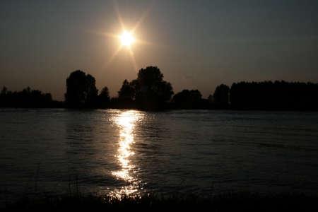 riverside tree: Sunset Stock Photo