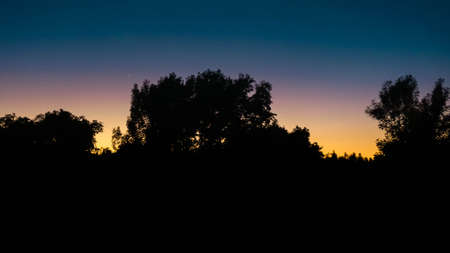sunset behind the trees