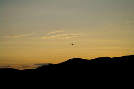 beautiful sunset on the Crimean Mountains with silhouettes of seagulls photo
