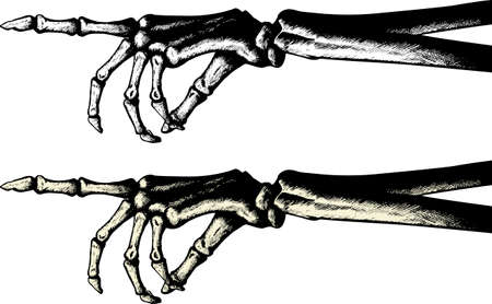 pointing finger pointing: Ink drawing of a pointing skeleton hand