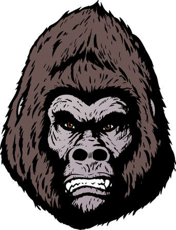 simian: Angry gorilla face Illustration