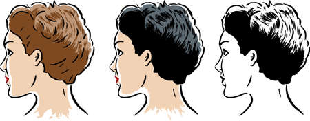 hairstylist: Drawing of a stylized woman in 3 different styles Illustration