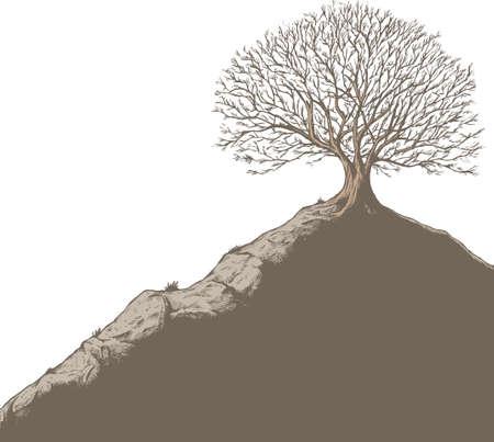 丘の上のツリー