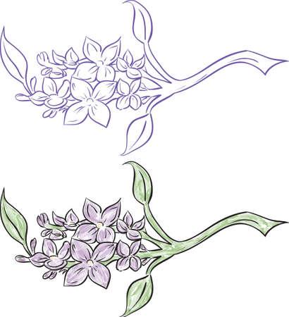 Lilac branch Ilustracja