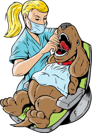 surgical mask: Veterinarian dentist Illustration