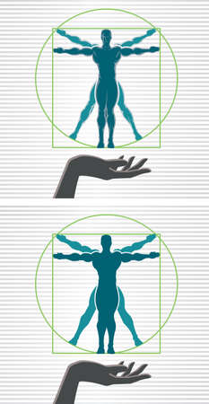 female athletes: Vitruvian man