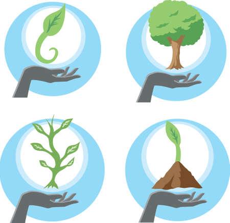Growing plants  Illustration